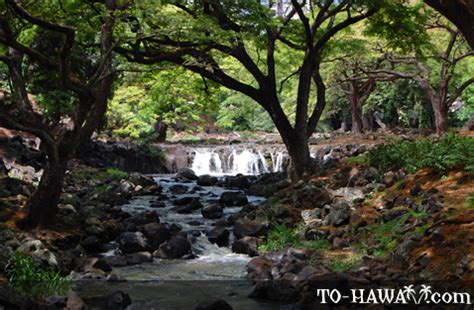 Liliuokalani Botanical Gardens Lili Uokalani Botanical Garden Oahu