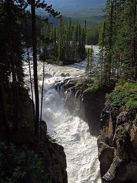 sunwapta falls file sunwapta falls in jasper national park jpg