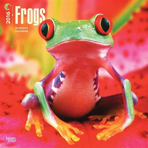 Cat Calendar 2018 Marks And Spencer Frogs Calendars 2018 On Abposters