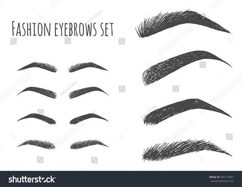 types forms eyebrows vector eeybrows vector stock vector gorgeous fashion brow set forms shapes stock vector