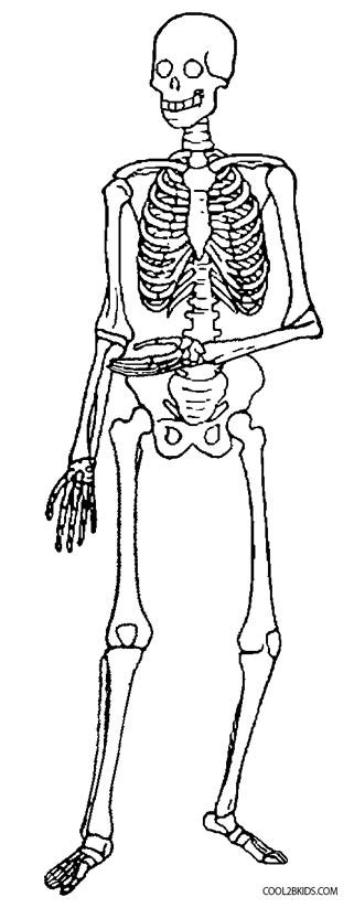 printable skeleton coloring pages for kids cool2bkids
