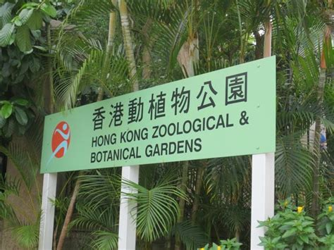 Hong Kong Zoo Botanical Gardens Picture Of Hong Kong Zoological And Botanical Gardens