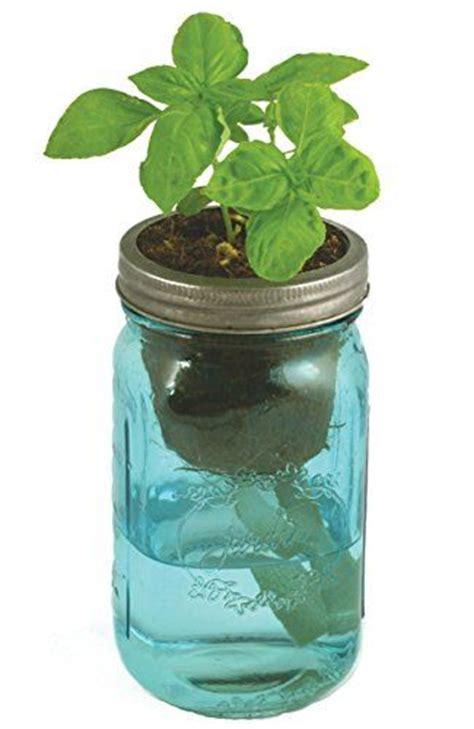 herb garden kit  watering hydroponic countertop garden