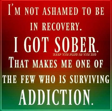 est images about addiction on 388 best recovery images on sobriety quotes 388