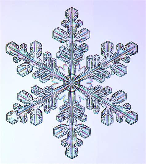 Click And Grow Amazon Snowflake Photographs Snowcrystals Com