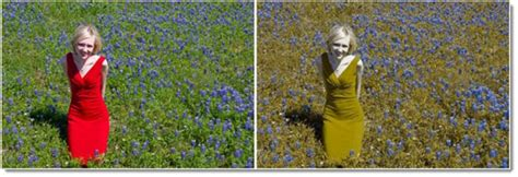 What Does Color Blindness Look Like by Amazing Oxy Iso Glasses Cure Red Green Colorblindness