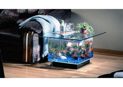 Fish Tank Living Room Table 17 Best Images About Misc On Brad Pitt Celtic Symbols And Meanings And Heming