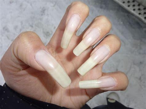 long nail beds best 25 long natural nails ideas on pinterest natural