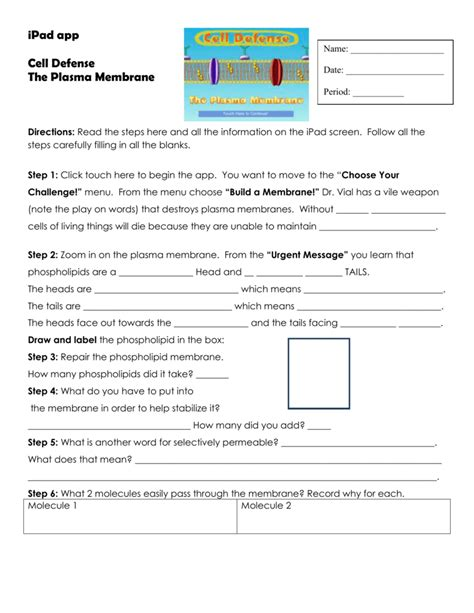 The S Defenses Worksheet Answers