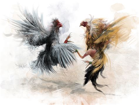 gallos d pelea animales on pinterest game fowl quarter horses and palomino