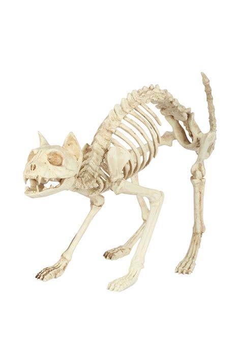 Best Halloween Home Decorations skeleton cat