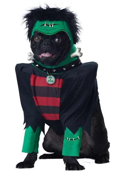 puppy this frankenpup costume