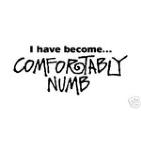 ive become comfortably numb i have become comfortably numb vinyl sticker vinyl