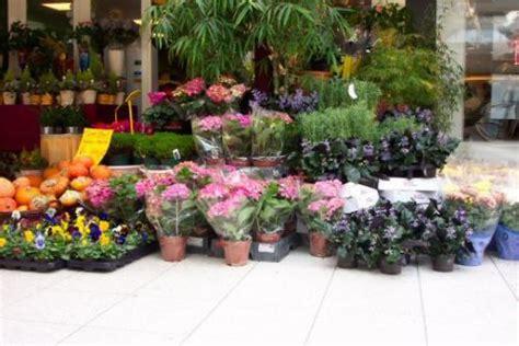 bloemen goirle flurosa bezorgt in de regio tilburg regiobloemist