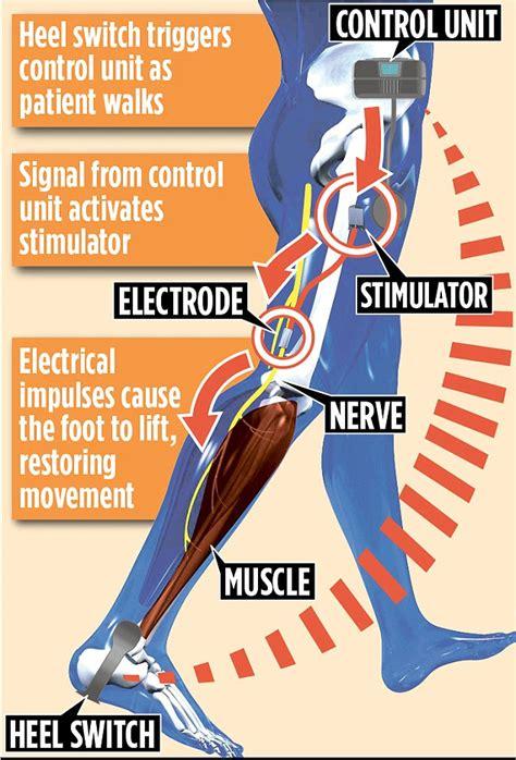 switch leg drop wiring diagrams wiring diagram