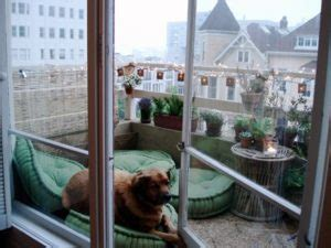 balcony dog bathroom how to stop panic attacks using dogs service dog