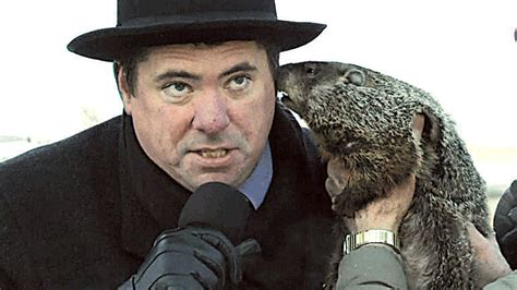 groundhog day jimmy will he see his shadow the waynedale news