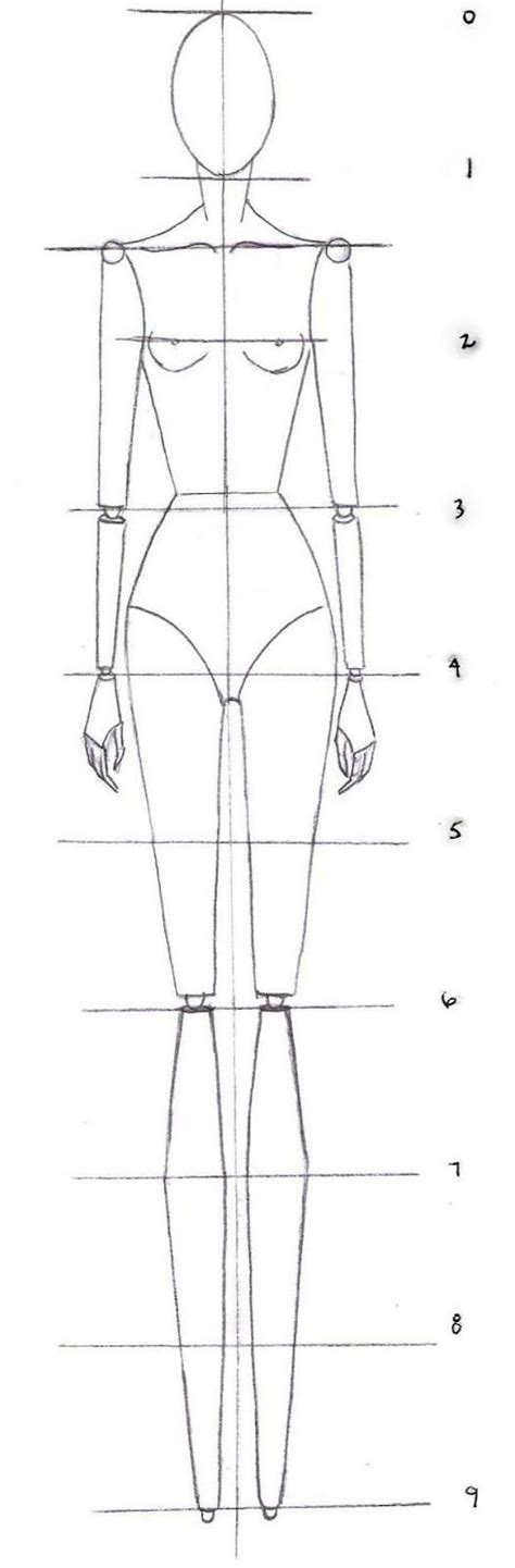 human pattern drawing how to drawing the proportions of a fashion croquis