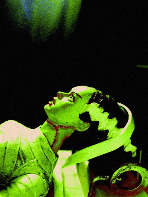 themes of beauty in frankenstein 17 best images about frankenstein the bride on pinterest