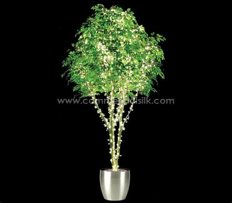 Artificial Ficus Benjamina Tree With Lights Lighted Silk Lighted Trees Artificial