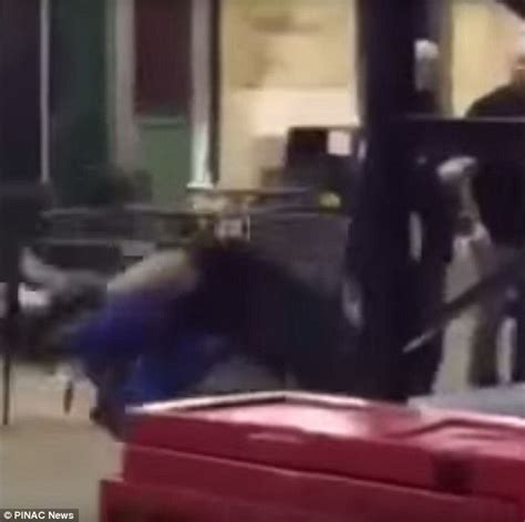 cop body slams fan cubs cop investigated for egging on crowd as he escorts
