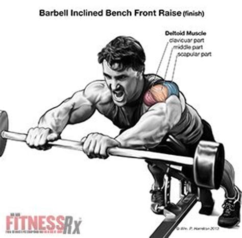 incline bench front raise pin by jared sexton on diet fitness pinterest