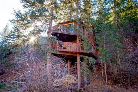 tree house airbnb 6 treehouses you can rent in colorado 303 magazine