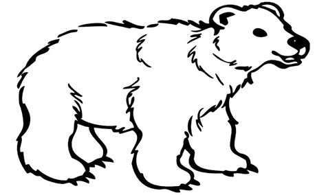 polar coloring pages polar e coloring page coloring pages