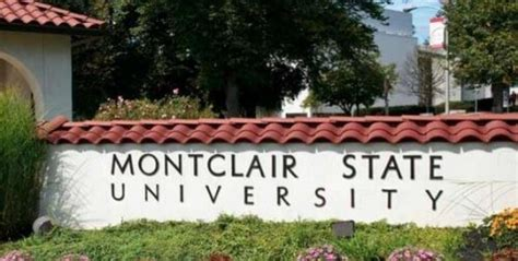 Montclair Mba by Bachelor S In Marine Biology Top 20 Values 2017 College