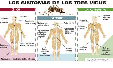 imagenes chistosas del zika cuadros comparativos y sin 243 pticos entre zika dengue y