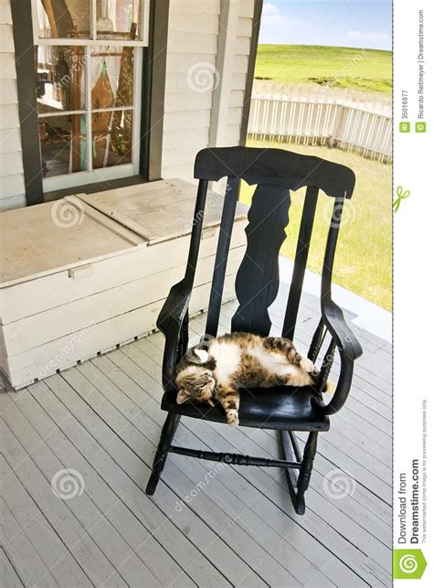 What Is A Sleeping Porch by Lazy Summer Country Cat On Back Porch Rocking Chair