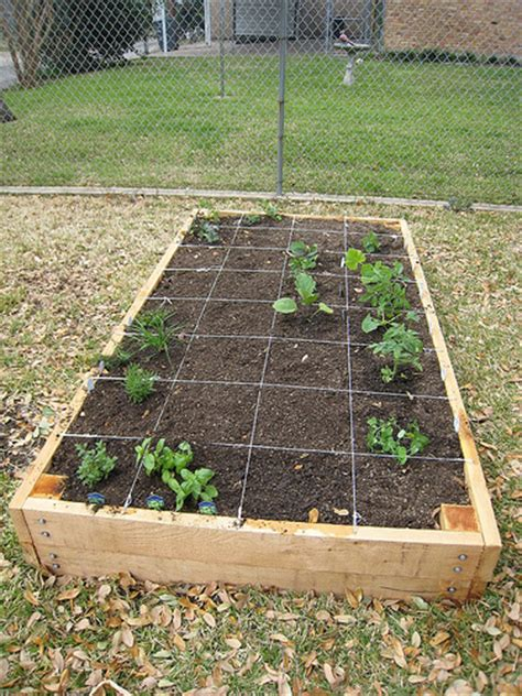 Raised Garden Layout Filling The Raised Vegetable Garden Bed Erin Covert On