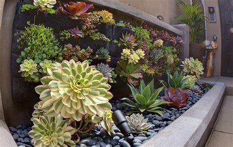 Ideas For Indoor Succulents Design Vertical Garden Design Eco Minded Solutions