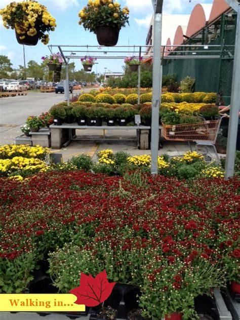 fall decorating  home depots garden center