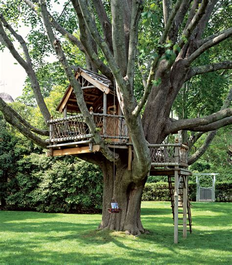 real treehouse not your childhood treehouse real estater