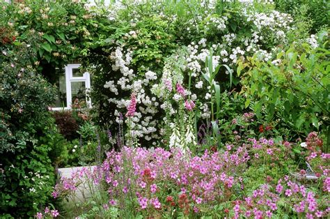 Traditional Cottage Garden Flowers Flowers Traditionally Used Cottage Garden Plants