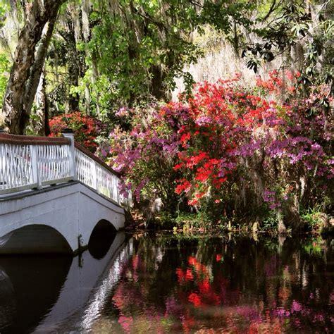 Charleston Botanical Gardens O Jpg