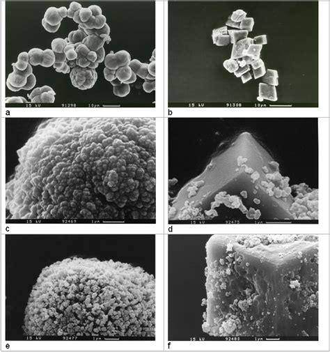 Calcite Mg authigenic carbonates geomar