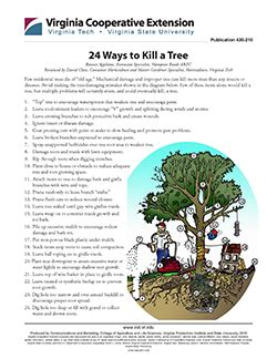 how to kill a bush 24 ways to kill a tree vce publications virginia tech