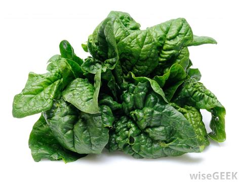 Spinach In Stool brown mucus in infant stool