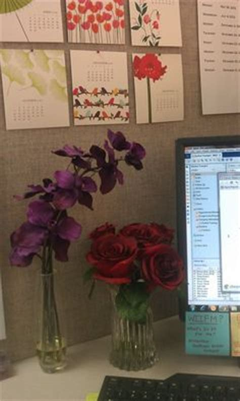 all things homie cubicle decorating cute l in the corner matches my wrapping paper