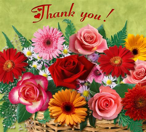 Thank You Flowers by For You Free Flowers Ecards Greeting Cards 123 Greetings