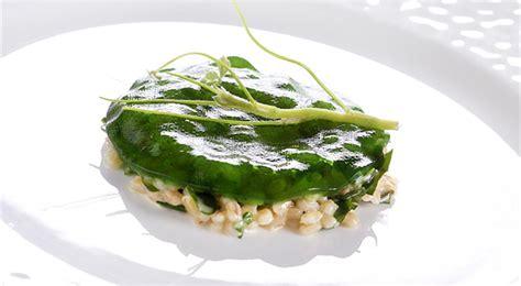 di cucina famosi ricette dei grandi chef i piatti e le ricette degli chef