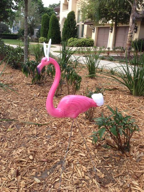 Costumes Natal Set Slc 102 102 best flamingos images on flamingos pink