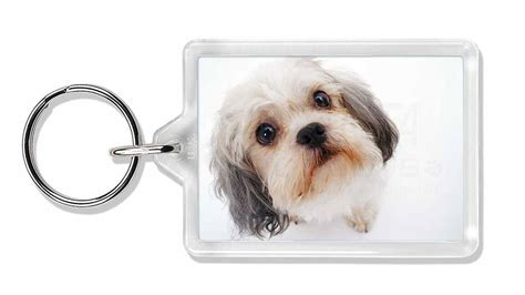 shih tzu gift shih tzu photo keyring animal gift id 24822