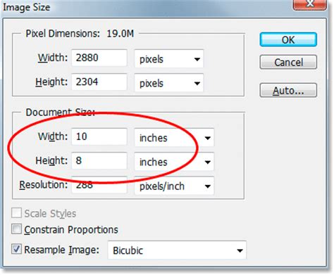Design Basics Inc by Cropping Photos To Specific Frame Sizes In Photoshop