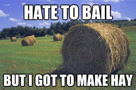 Meme Puns - bail hay pun meme memes quickmeme