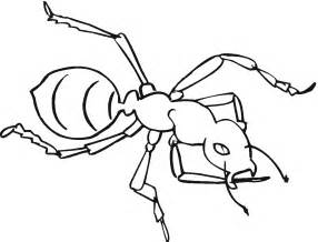 ants colouring pages