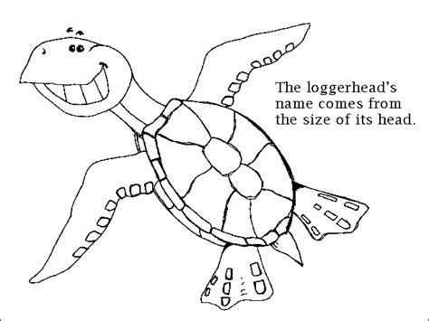 coloring pages loggerhead turtle sea turtle coloring page animals town free sea turtle