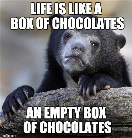 Life Is Like A Box Of Chocolates Meme - confession bear meme imgflip